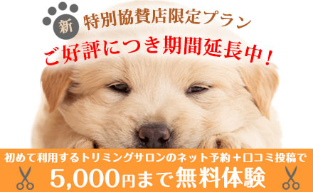 EPARK会員様限定!口コミ投稿を条件に5,000円まで無料でシャンプーやトリミングを体験