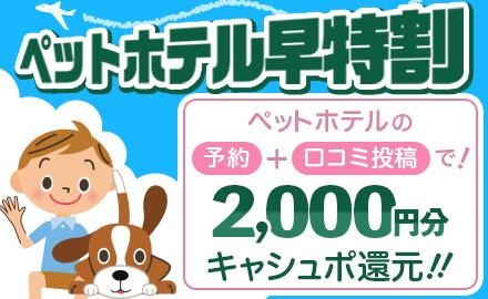 【ペットホテル早特割】初めてご利用になるペットホテルの予約をしていただくと2,000円分キャシュポ還元!