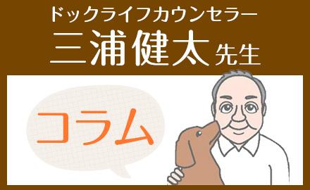 三浦健太先生のおすすめコンテンツ