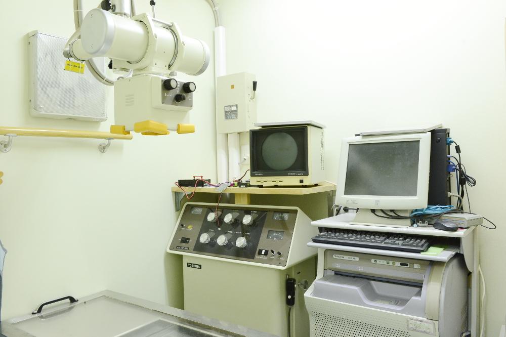 マイシャ動物病院