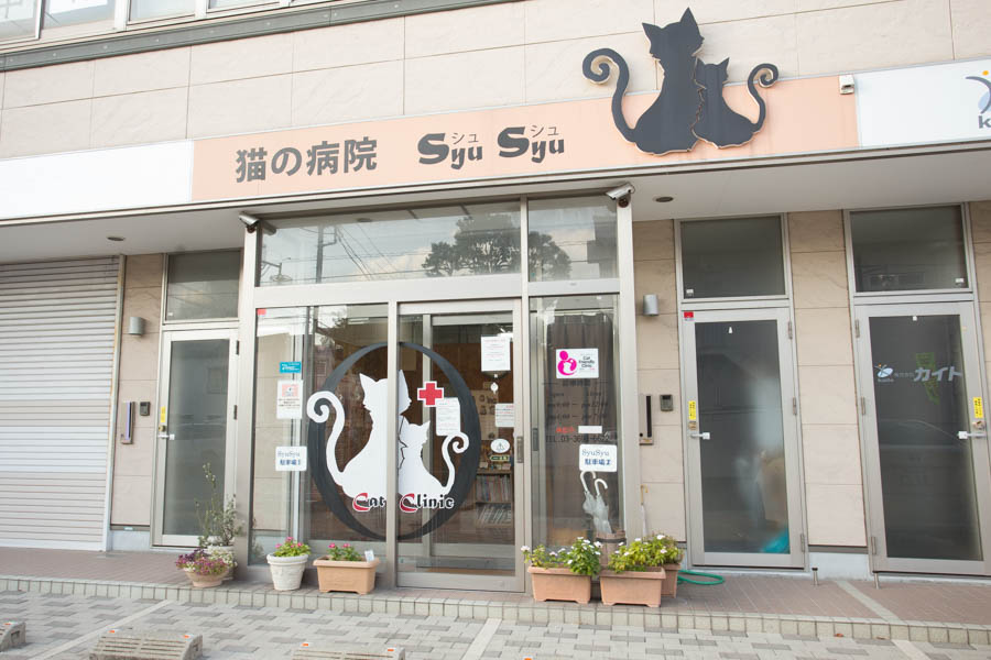 SyuSyu CAT Clinic
