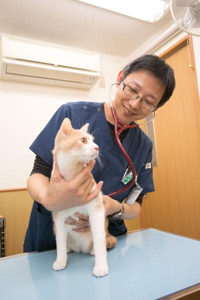 久米川みどり動物病院
