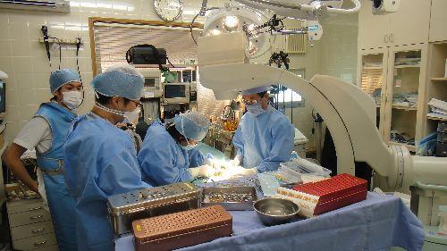 葉山どうぶつ病院の診療風景