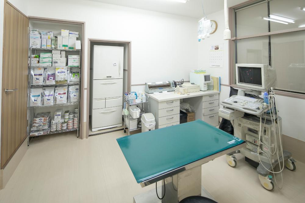 まとばフォレスト動物病院