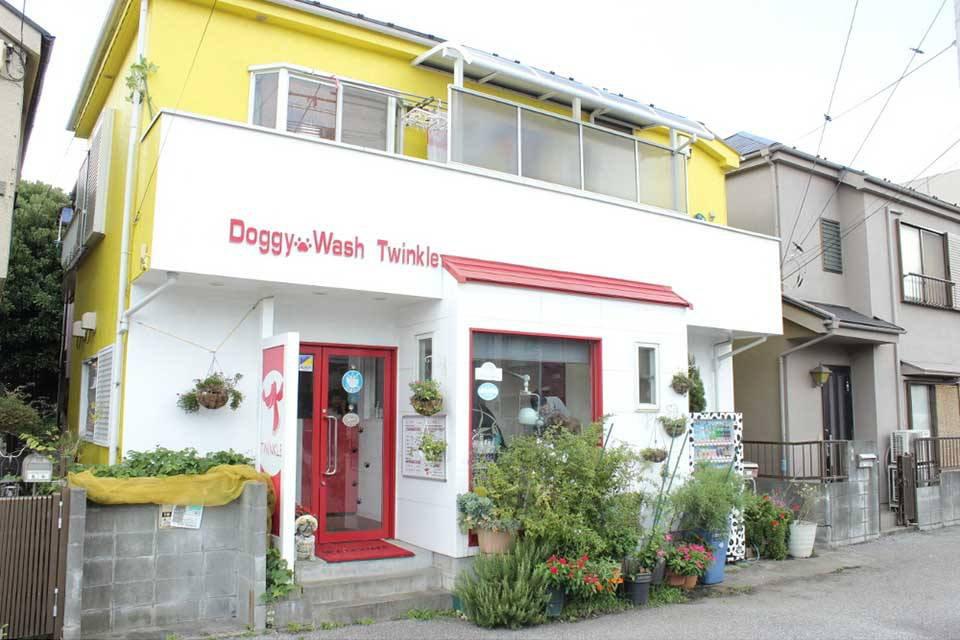 Doggy Wash Twinkleのメイン画像