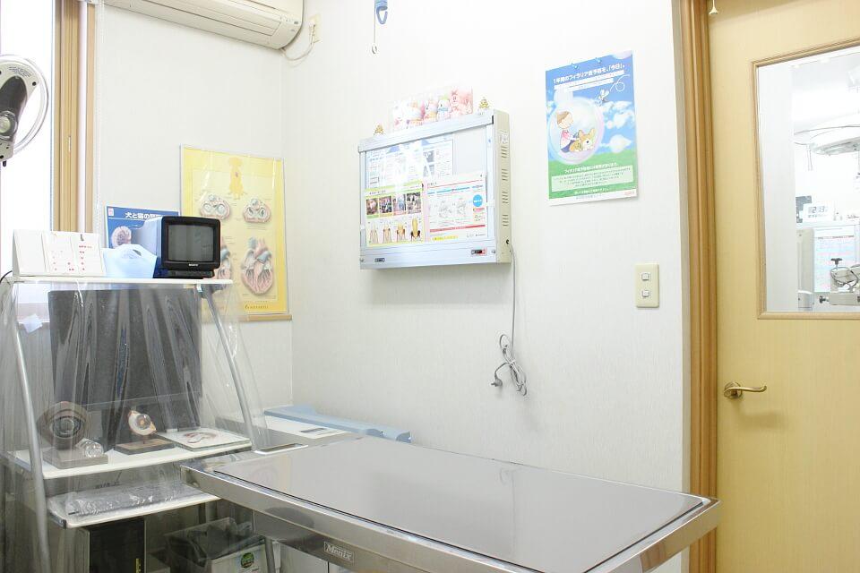 森田動物医療センター内観写真