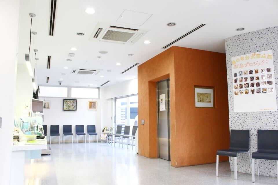 ぬのかわ犬猫病院 戸塚本院の内観画像