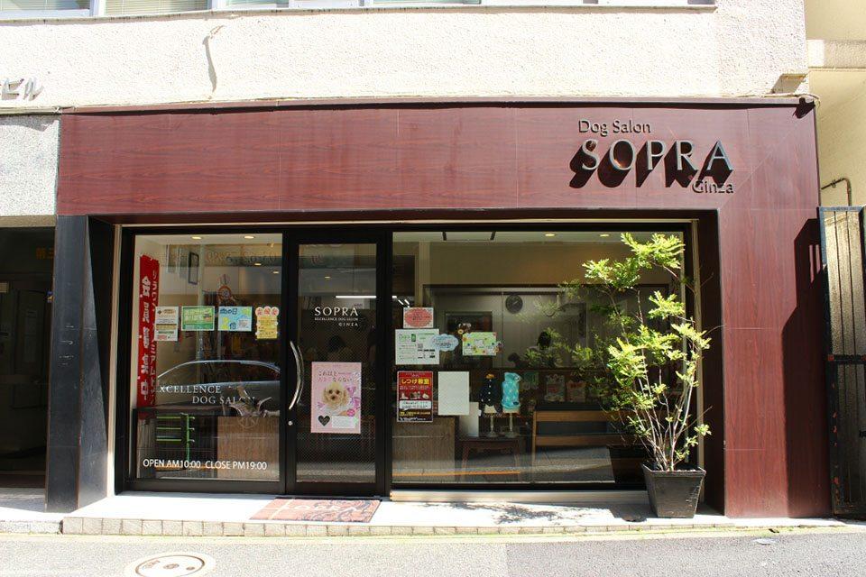 SOPRA GINZA 銀座店(ソプラ ギンザ ギンザテン)のメイン画像