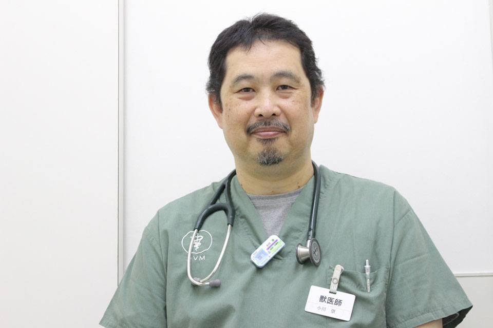 おがわ動物病院の評判・口コミ - 千葉県八街市【動 …