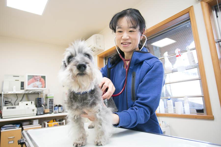 ぬのかわ犬猫病院 中田分院 スタッフ写真