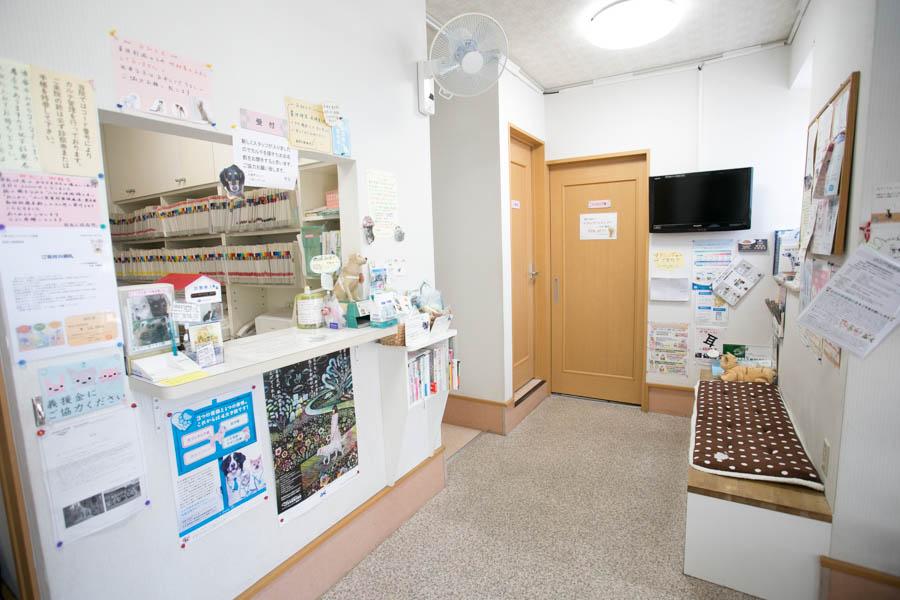 新宿犬猫病院内観