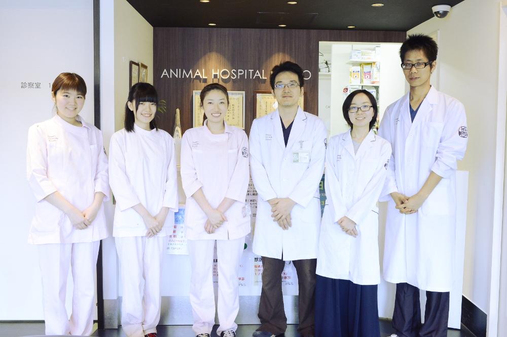 動物病院京都内観写真