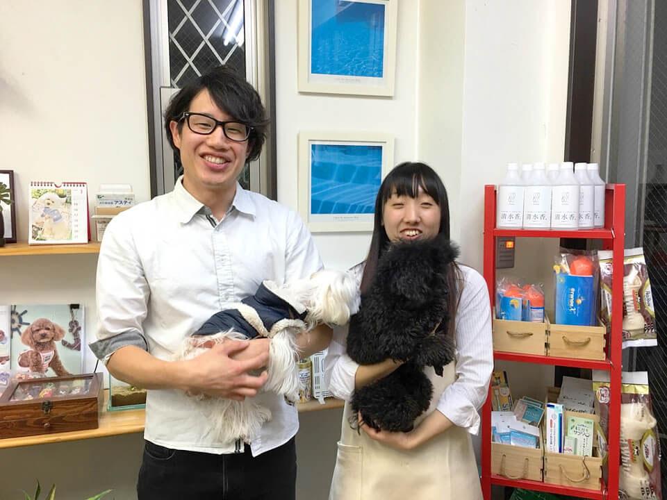 犬の美容室アスティ 蘇我店 トリマー写真