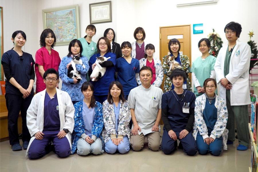 天童動物病院