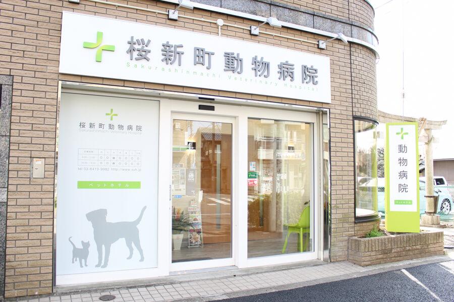 新桜町動物病院の診療方針について