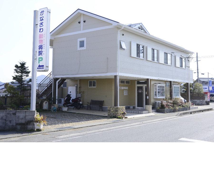 病院 加古川 動物