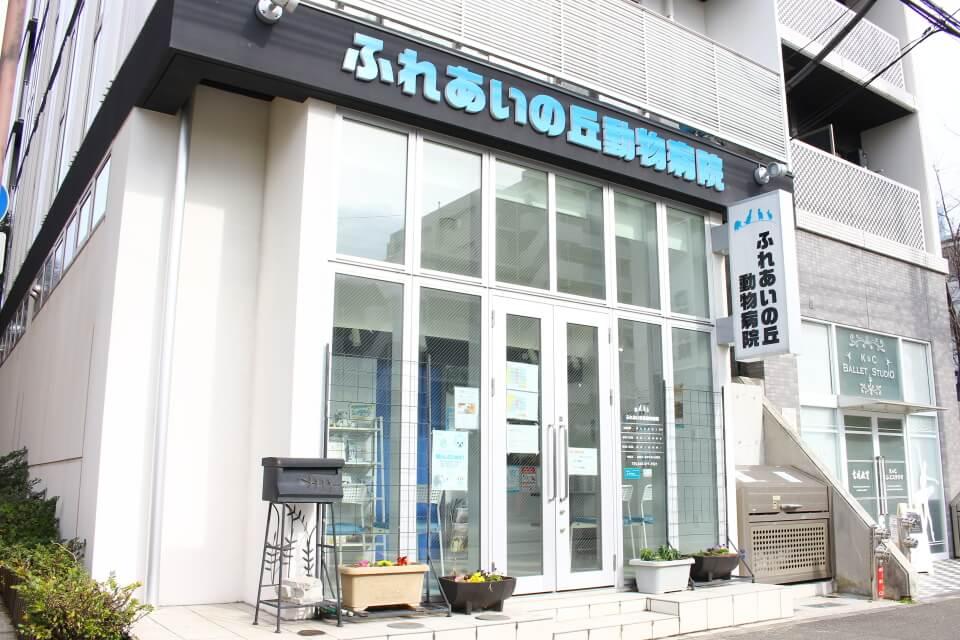 横浜市で夜間診療をしている動物病院【5選】 | PETPET LIFE