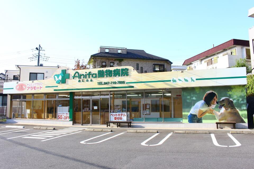 アニファ動物病院 松戸院