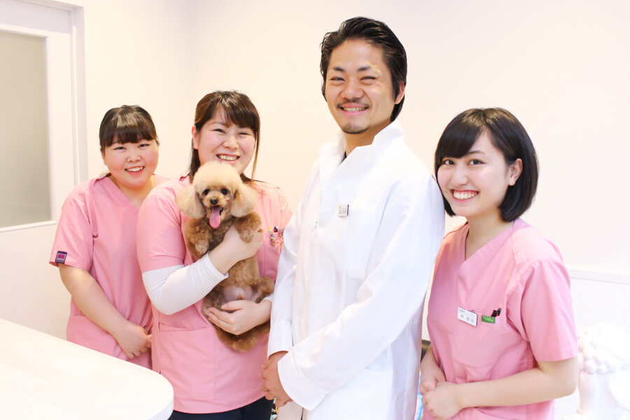 SHIBUYA フレンズ動物病院