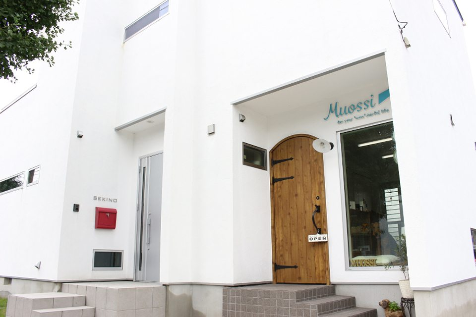 Dog salon MUOSSI
