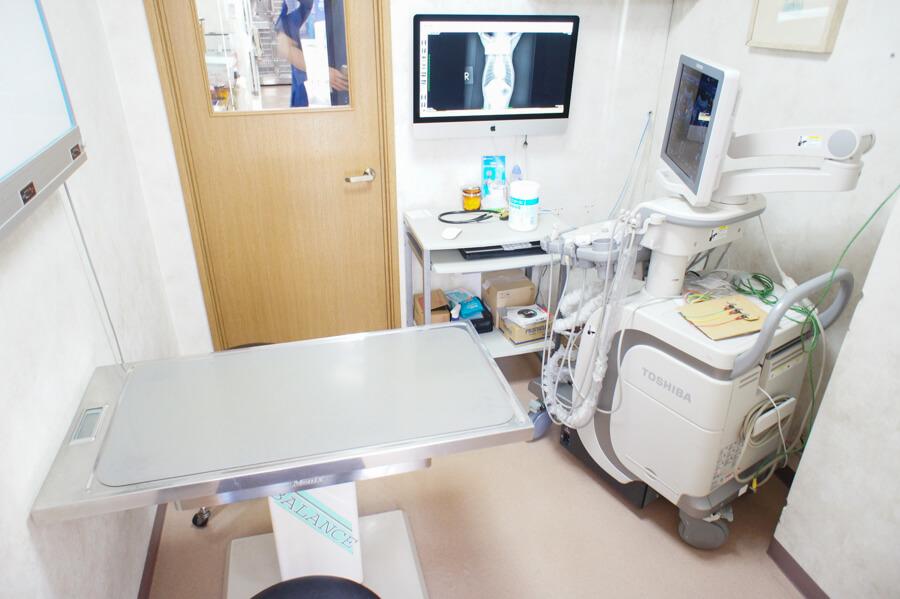 児玉どうぶつ病院 内観