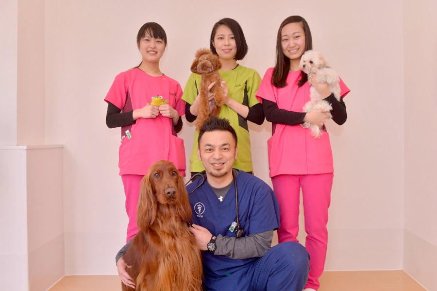 いけぶくろ動物病院(トリミング)のメイン画像