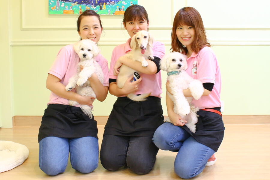 Dog Care Salon LINDOスタッフ写真