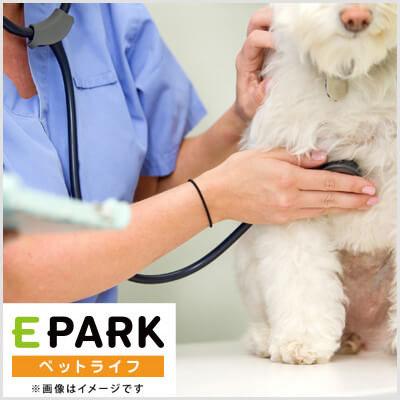 ゆいまーる動物病院