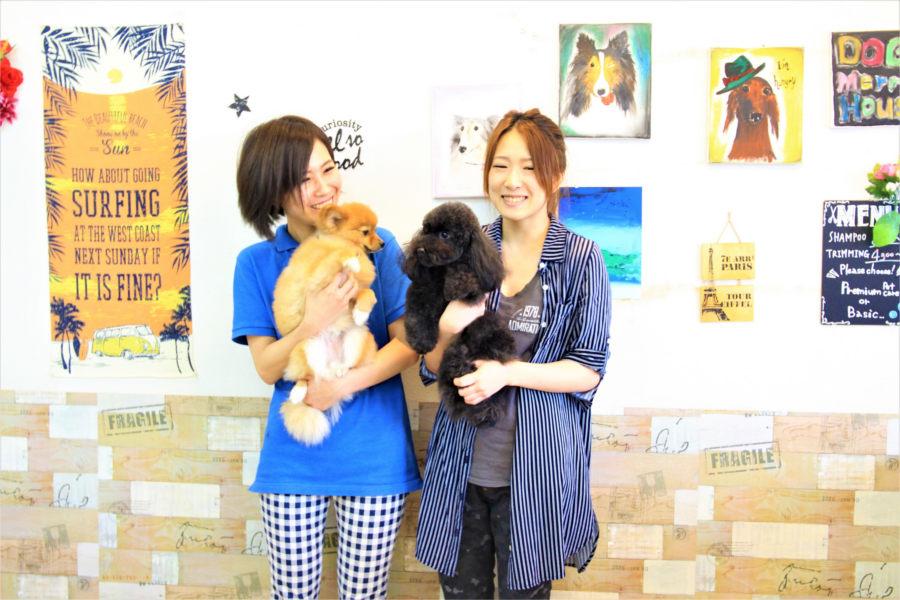 DOG@MerryHouse 小倉のメイン画像