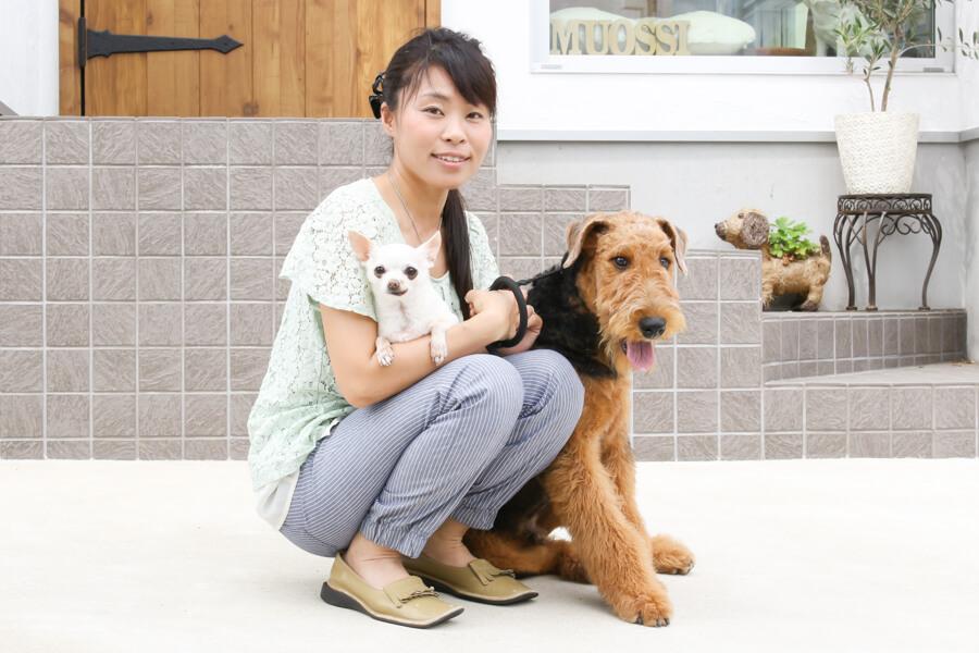 Dog salon MUOSSI