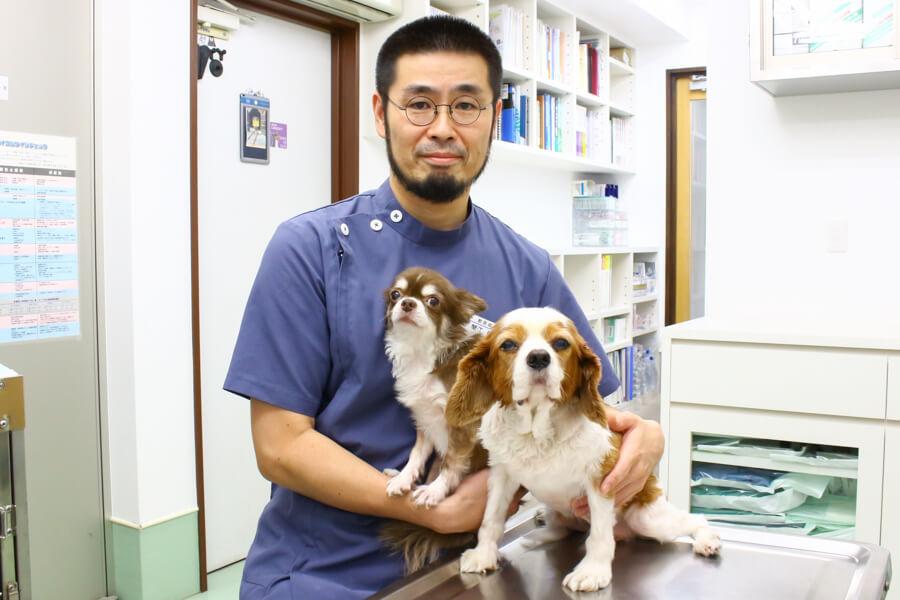 エルム動物病院(トリミング)のメイン画像