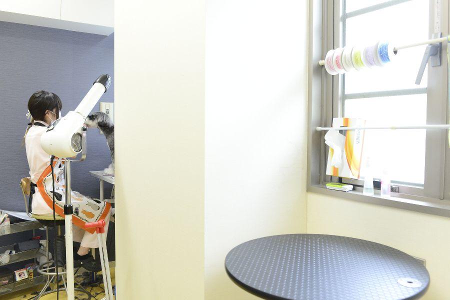 春日丘動物病院の内観画像