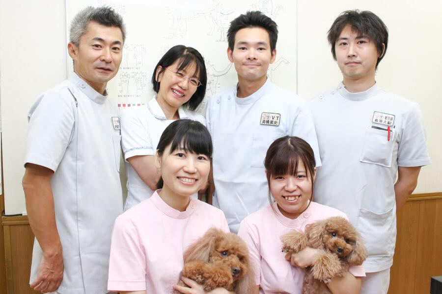 千城台動物病院のメイン画像