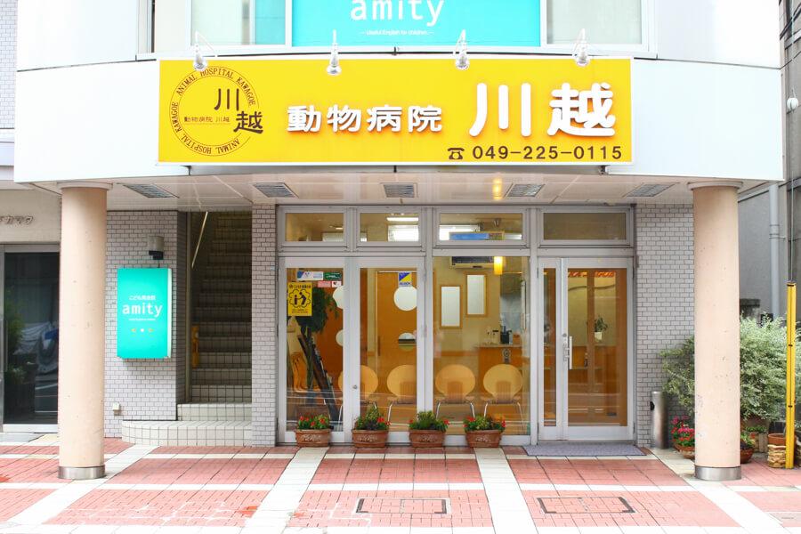 動物病院川越(トリミング)