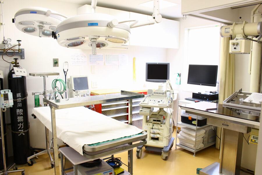 おおくぼ動物病院の内観画像