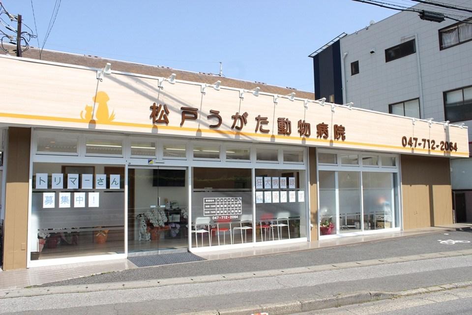 松戸うがた動物病院(トリミング)写真