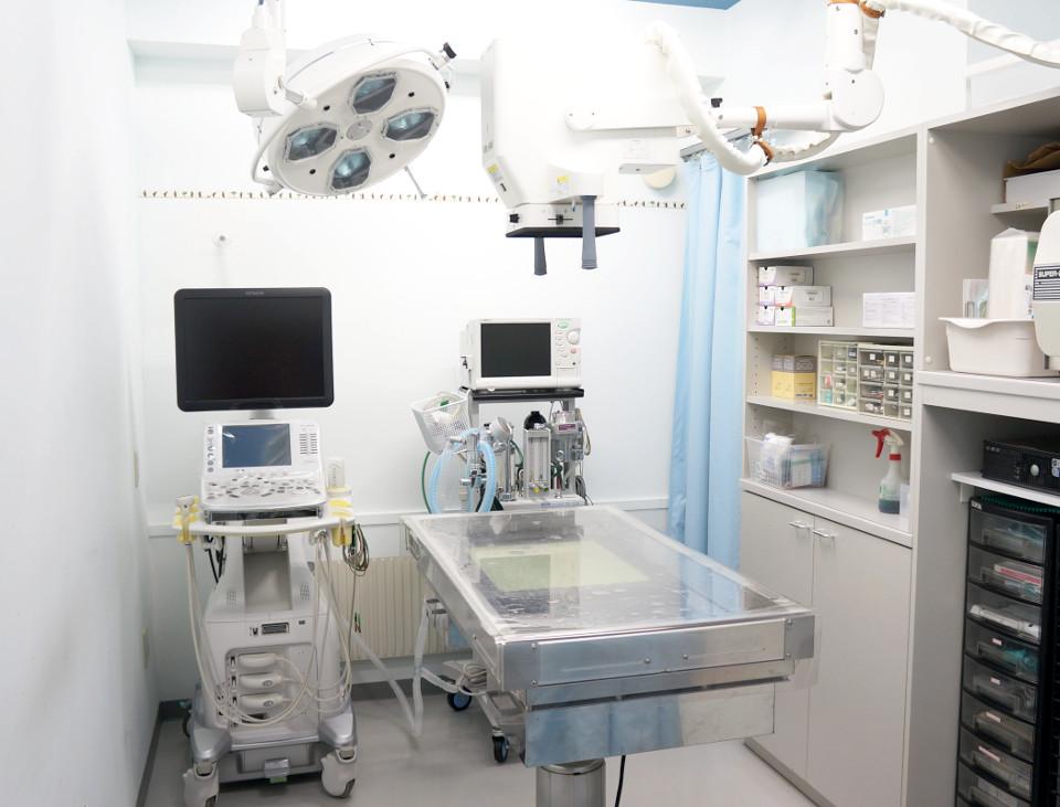ラサ動物病院