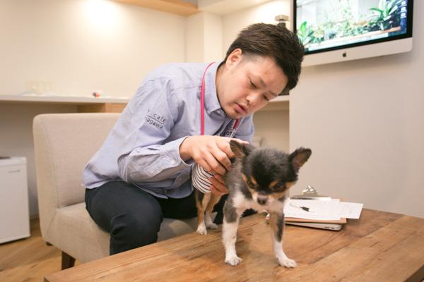 皮膚科に力を注ぐ動物病院!飼い主さまもペットもリラックスできる病院づくりに尽力