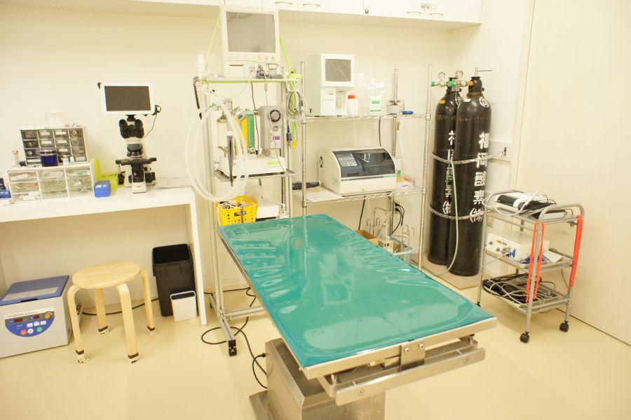 そら動物病院の内観画像