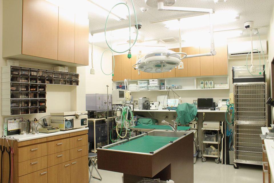 最新の機器を備えた動物病院