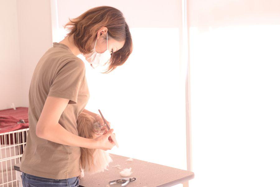 シアン ドゥ ローズのメイン画像