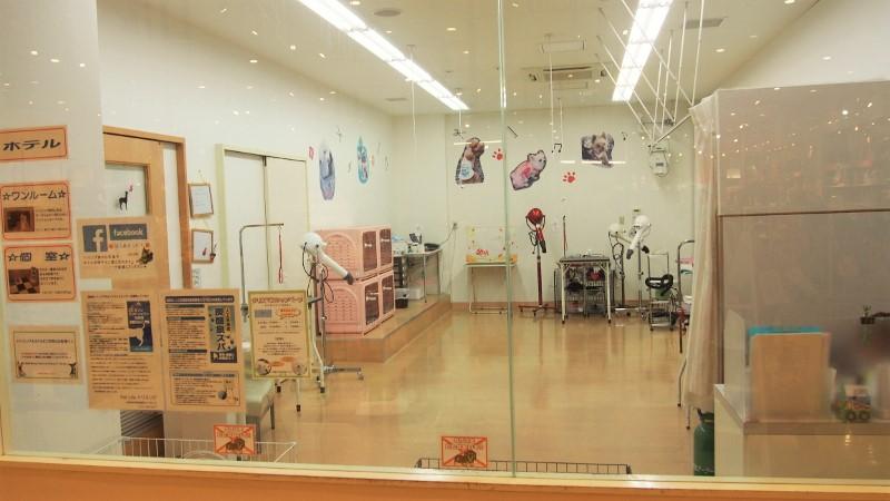 《予約可》Pet Life トリミング アリオ鳳店,堺市西区鳳南町 ...