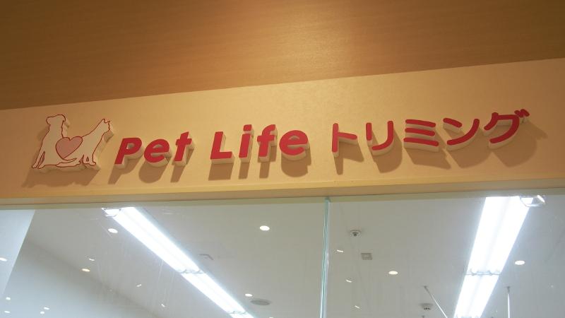 Pet Life トリミング アリオ鳳店のメイン画像