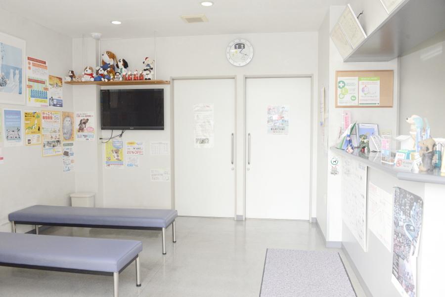 たんぽぽ動物病院の評判、料金   動物病院の検索サ …