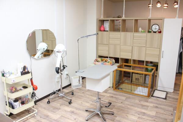 Dog Salon IVY