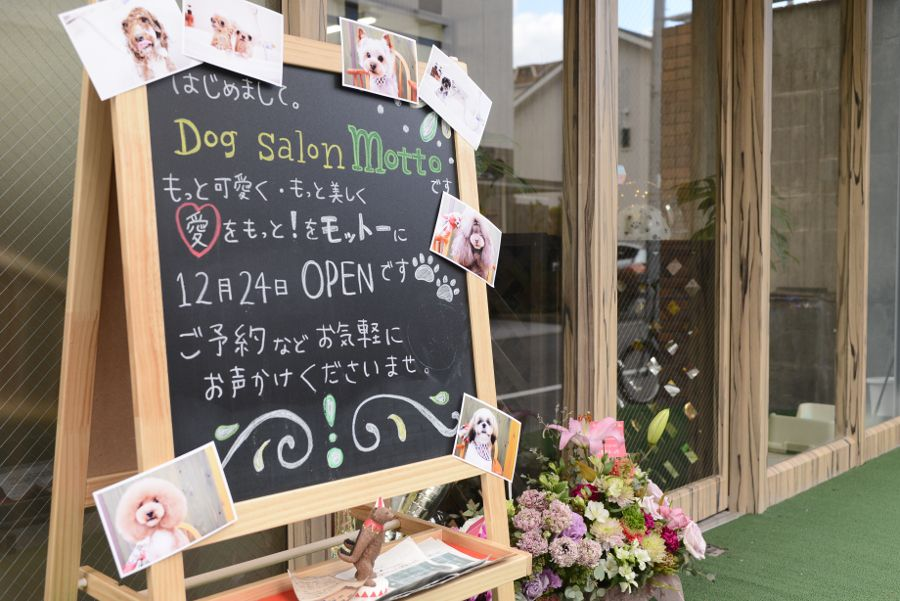 Dog salon motto