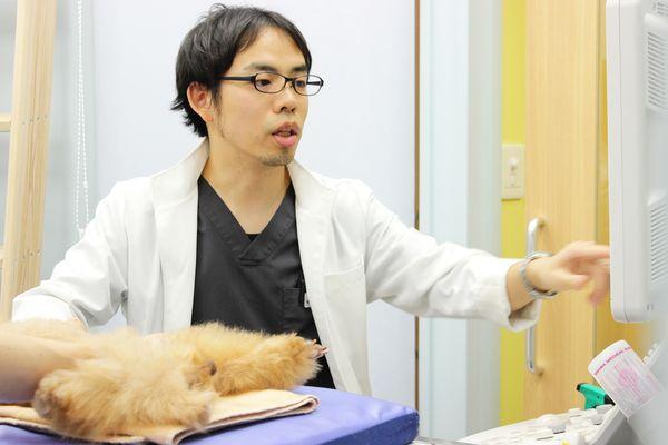 奥沢すばる動物病院