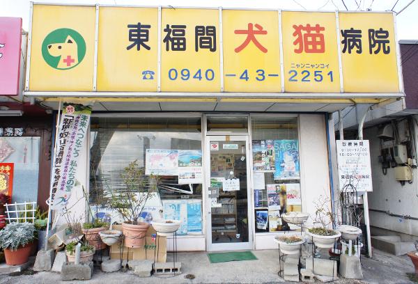 東福間犬猫病院の外観画像
