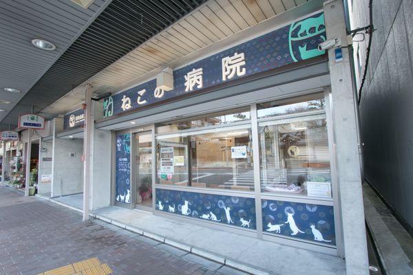 物病院京都 ねこの病院メイン画像
