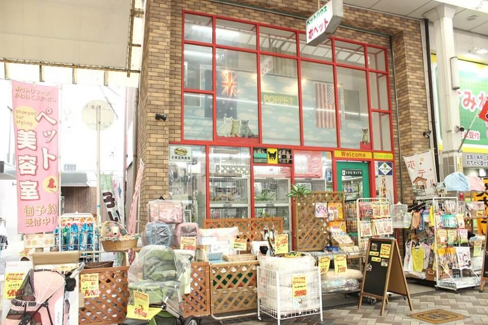 ペットハウス ポペット 池田本店